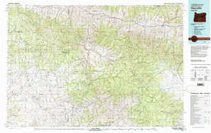 Dayville 1:250,000 scale USGS topographic map 44119a1
