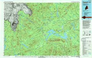 Flagstaff Lake topographical map