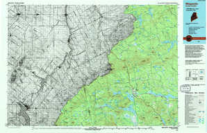 Megantic topographical map