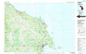 Alpena topographical map