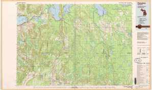 Petoskey topographical map