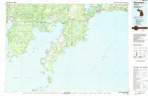 Manistique topographical map