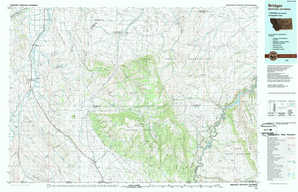 Bridger topographical map