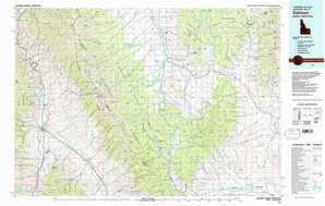 Salmon 1:250,000 scale USGS topographic map 45113a1