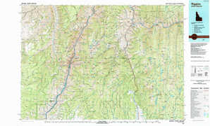 Riggins topographical map