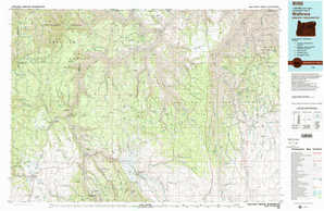 Wallowa topographical map