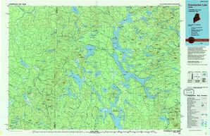 Chamberlain Lake topographical map