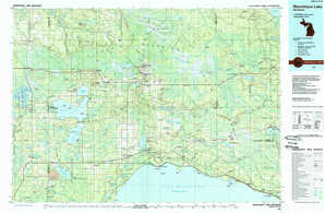 Manistique Lake topographical map