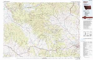 Elliston topographical map