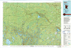Bigfork topographical map
