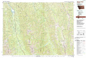 Swan Peak topographical map