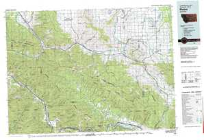 Plains topographical map