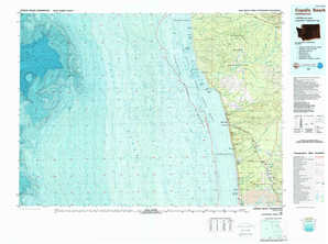 Copalis Beach topographical map