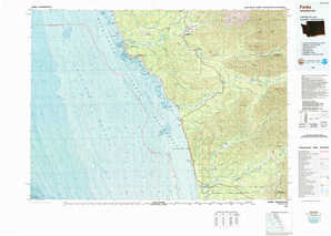Forks topographical map