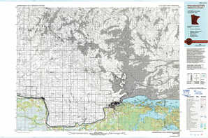 International Falls topographical map