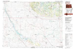 Bottineau topographical map