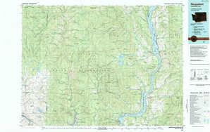 Nespelem topographical map