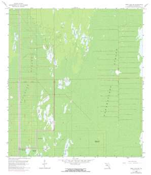 Deep Lake Sw USGS topographic map 26081a4