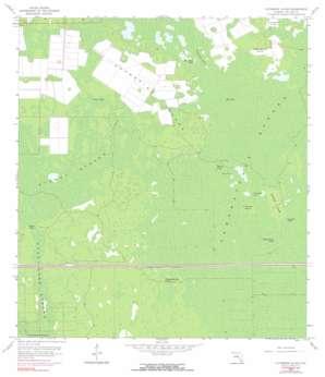 Catherine Island USGS topographic map 26081b4