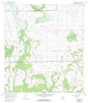 Immokalee Sw USGS topographic map 26081c4