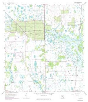 Felda USGS topographic map 26081e4
