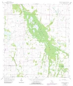 Telegraph Swamp USGS topographic map 26081g6