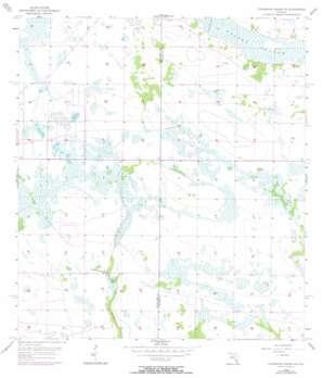 Telegraph Swamp Ne USGS topographic map 26081h5