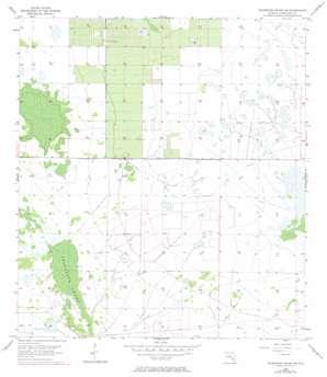 Telegraph Swamp Nw topo map