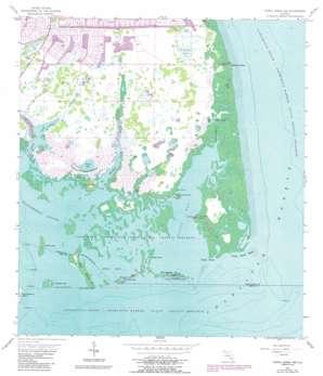 Punta Gorda Sw USGS topographic map 26082g2