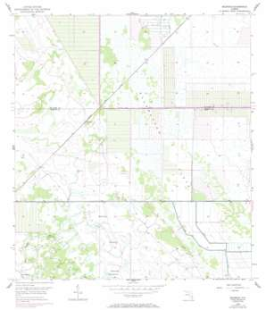 Okeechobee 4 Ne USGS topographic map 27080b5