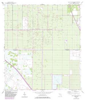 Fellsmere 4 Se USGS topographic map 27080e5