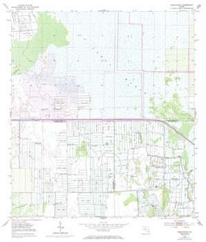 Fellsmere 4 Sw topo map