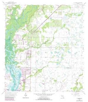 Fort Ogden topo map