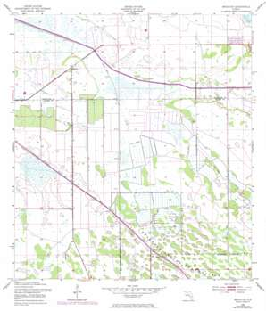 Brighton USGS topographic map 27081b1