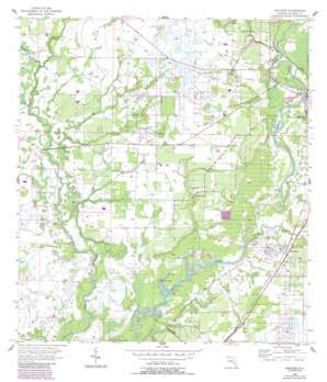 Nocatee USGS topographic map 27081b8