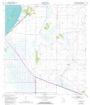 Basinger Sw topo map