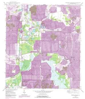 Bradley Junction USGS topographic map 27081g8
