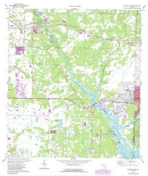 Myakka River USGS topographic map 27082a3