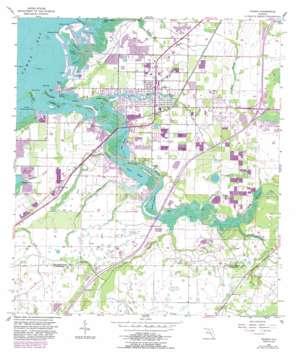 Ruskin topo map