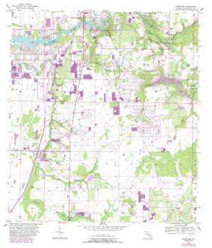 Riverview USGS topographic map 27082g3