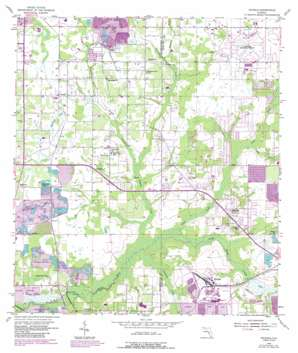 Nichols USGS topographic map 27082h1
