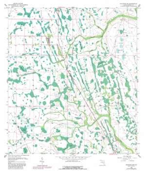 Holopaw Se topo map