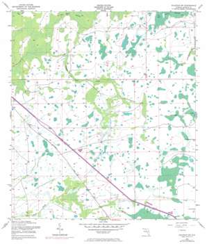 Holopaw Sw USGS topographic map 28081a2