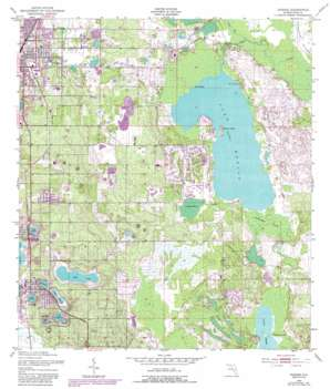 Dundee USGS topographic map 28081a5