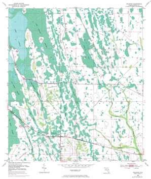 Holopaw USGS topographic map 28081b1