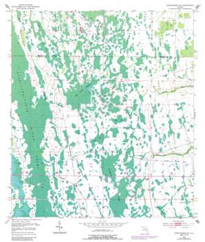 Narcoossee Se USGS topographic map 28081c1