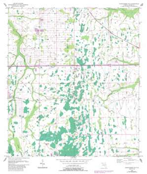 Narcoossee Ne USGS topographic map 28081d1