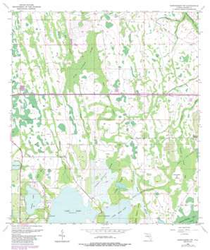 Narcoossee Nw topo map
