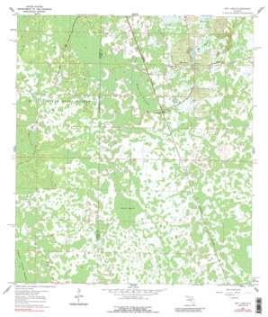 Bay Lake topo map
