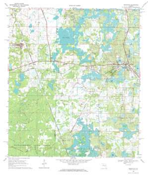Mascotte USGS topographic map 28081e8